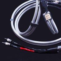 Q-10 エクスト Premium (ホワイト 2 m pair)
